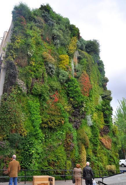 Flickr photo sharing - El jardin vertical ...