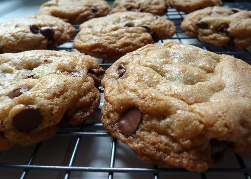 chewy chocolate chip cookie | by Lara604