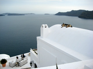 santorini, with sleeping dog on roof | by viv choi