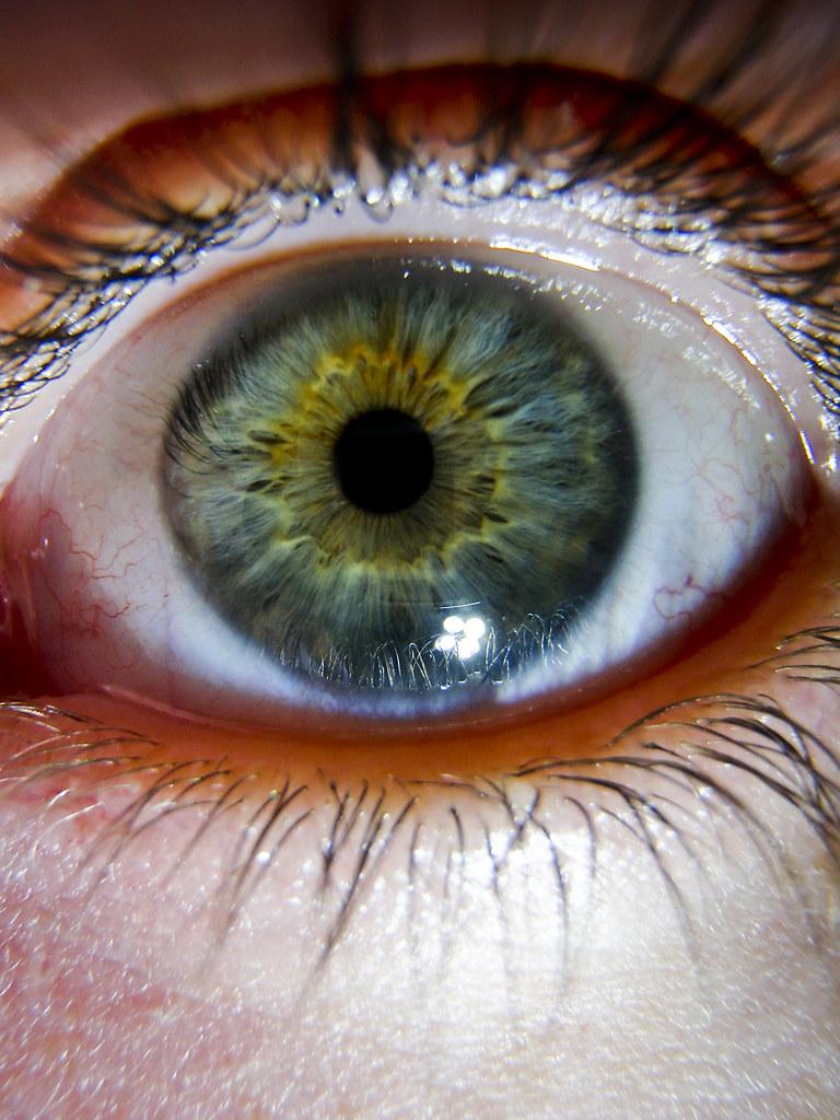 Eye macro - 2009   Your typical run of the mill eye macro ...