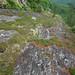 long cliff, glade mountain, ellicott rock wilderness, chattahoochee national forest, rabun county, georgia 1