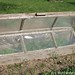 Amish Cold Frame 9