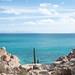 Looking across the Sea of Cortez to Baja