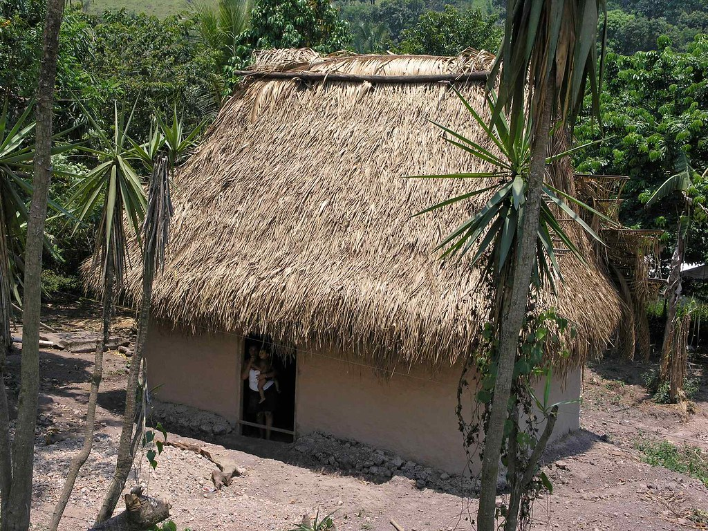 Thatched roof home casa con techo de palma cerca del r for Techos de casas en honduras