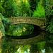 Verde que te quiero verde (FOTO ROBADA//STOLEN PHOTO)