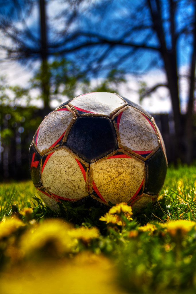 Spring has Sprung | Picture of the soccer ball in my back ...
