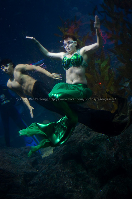 Merman And Mermaid In Love | www.imgkid.com - The Image ...