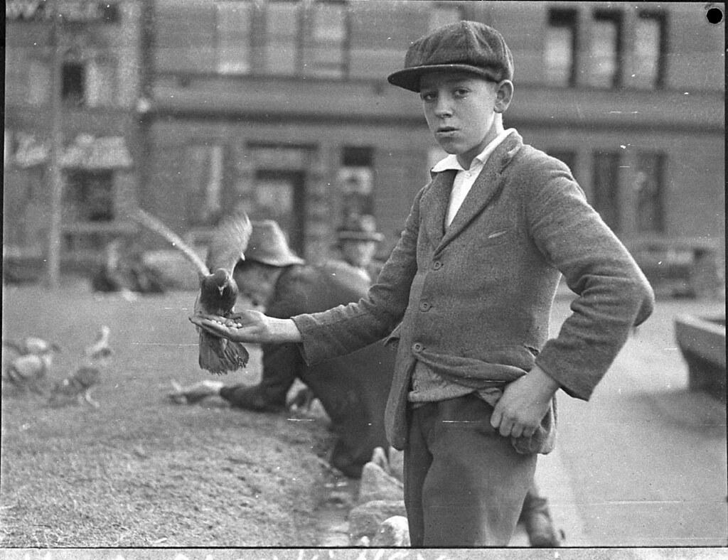 Boy With Pigeons At Circular Quay, Sydney, 2261935  B -6337