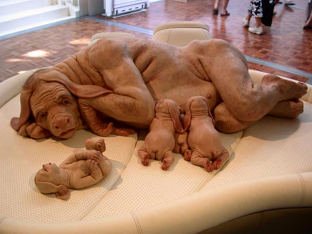 """swine flu   deaths in the u s  since january swine flu …   flickr    swine flu   by """"caveman chuck"""" coker"""
