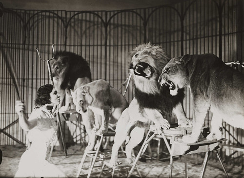 A lion tamer at Bertram Mills Touring Circus, Ascot | by National Media Museum