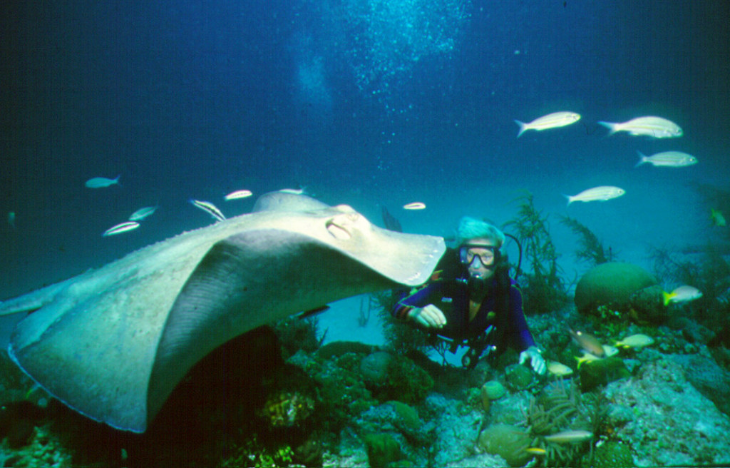 Scuba Diving Fort Lauderdale | Fort Lauderdale: Scuba ...