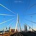 Rotterdam Eramusbrug