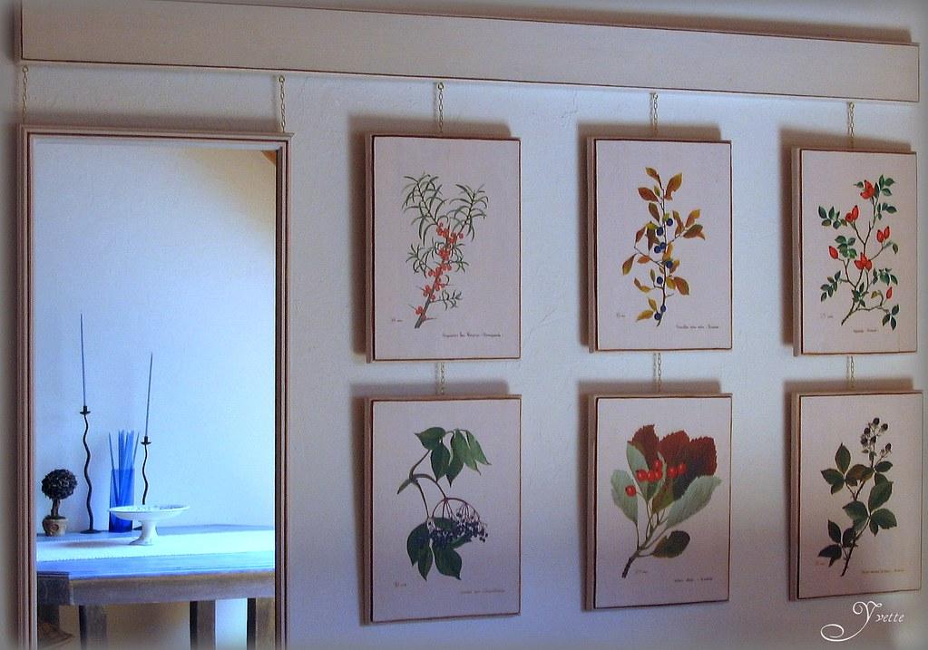 Planches botaniques peinture acrylique sur bois d 39 apr s flickr - Peinture acrylique sur bois ...