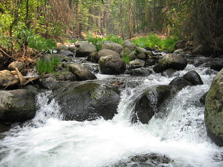 Bailey Creek | by USFS Region 5
