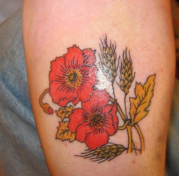 poppy flower tattoo kang for prez 2012 flickr. Black Bedroom Furniture Sets. Home Design Ideas
