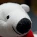 La sonrisa del oso polar 3