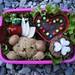 Valentine's bento