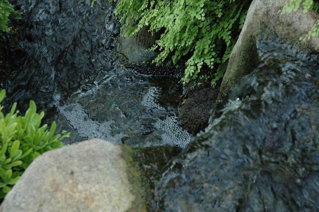 Meditation Garden Self Realization Fellowship Encinitas California Usa 3580 Flickr