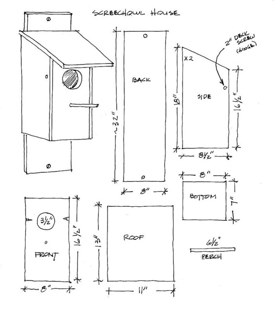Screeh Owl house plans let me know if you build these tag Flickr