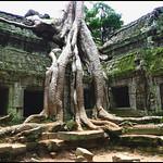 40-Templo Preah Ko.