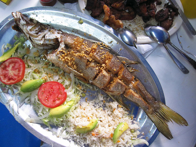 Fried robalo snook an almost legal by us standards for Robalo fish in english