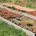garden-15