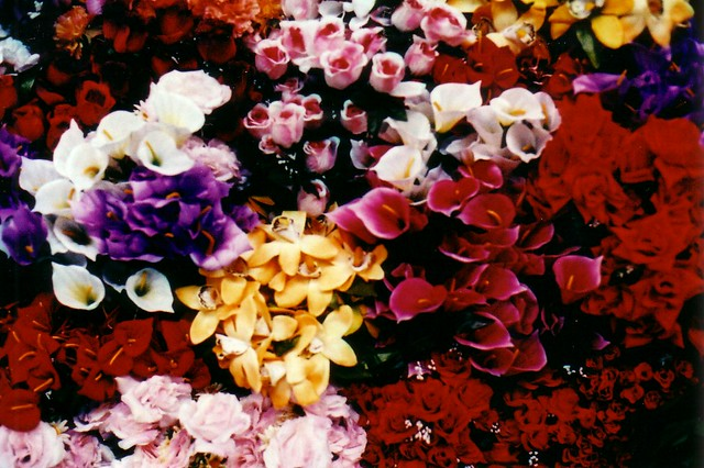 Flores de pl stico flickr photo sharing - Flores de plastico ...