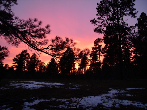 Black Hills Sunset | by wyo92