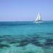 Bahamas - Paradise Island / Cabbage Beach