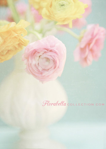 Ranunculas in Belleek | by Shana Rae {Florabella Collection}