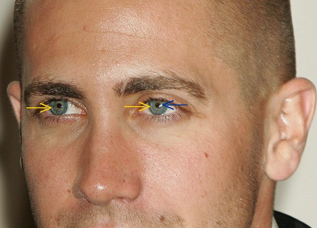 Jake Gyllenhall In His Contact Lenses 3b The Yellow