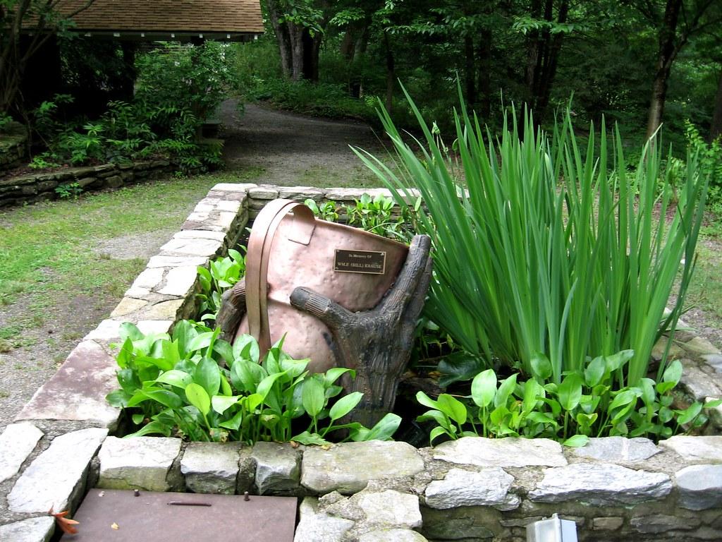 Botanical Gardens At Asheville Ted Flickr