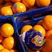 Oranges -Picos de Europa
