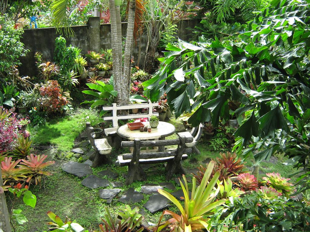 Tropical garden garden set of our house in iriga city for Philippine garden plants