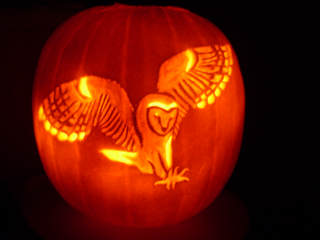 Owl pumpkin carving design for