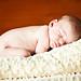 {newborn} Baby B