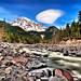 Rainier River