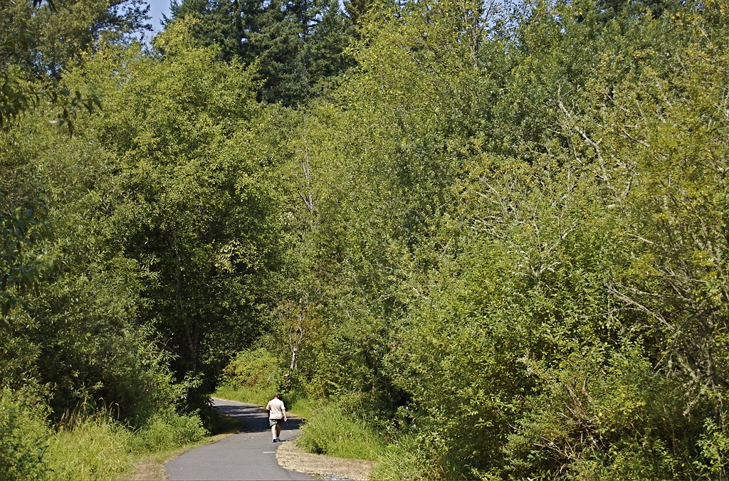 soos creek trail king county parks your big backyard flickr