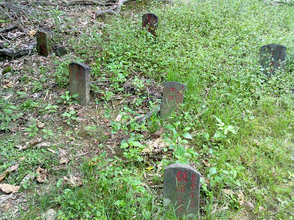 六張犁葬區一隅。(攝影:王顥中)