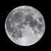 Full Moon =) 03-11-2009