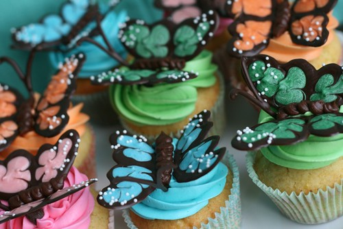 butterfly cupcakes 1 | by annieseats