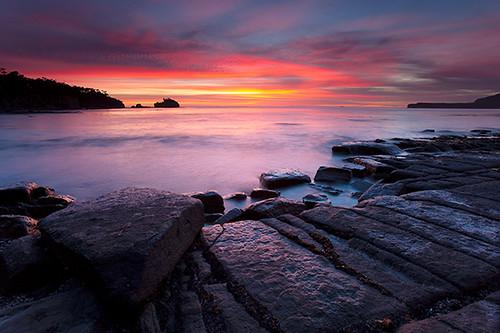 Tessellated Pavement Sunrise, Pirates Bay, Tasmania | Flickr