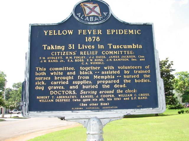 yellow fever epidemic essay Yellow fever essay outline  in 9 south american countries it is an epidemic  yellow fever is a virus that is carried by mosquitoes - catchable if bitten by .