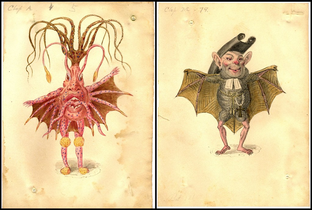 Sea Nettle and Bat