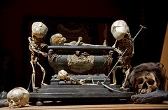 Fetal Skeleton Tableau, 17th Century, University Backroom, Paris | by astropop