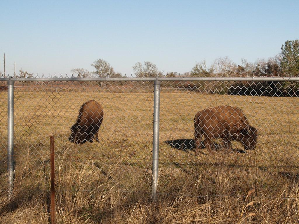 Prairie Park Nature Center Jobs