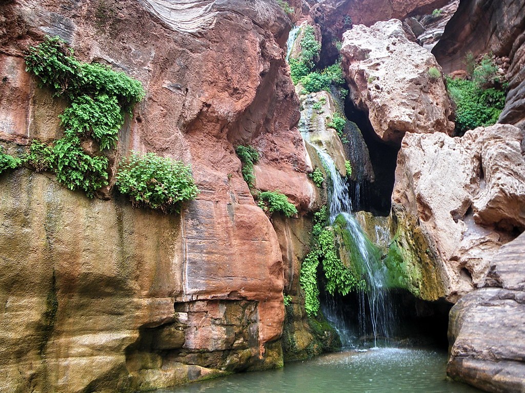 Best Grand Canyon Hotels