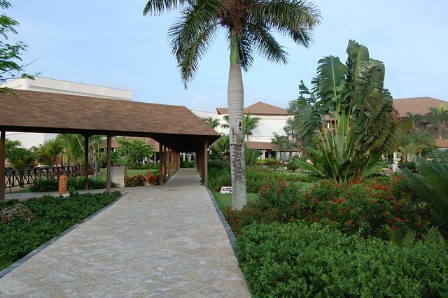 Dreams Punta Cana Resort Spa Deluxe Family Room
