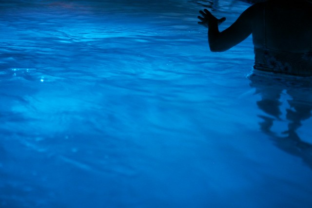 night swimming listen Mayfly Alicia Flickr