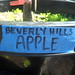 Hayes Valley Farm - 5/13/10